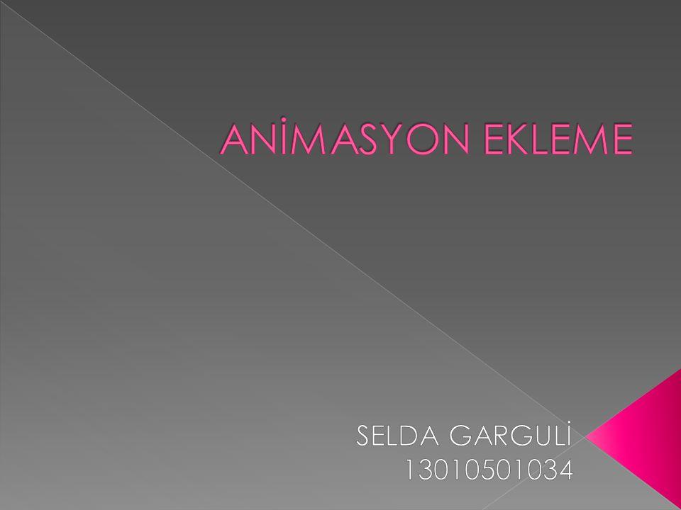 ANİMASYON EKLEME SELDA GARGULİ 13010501034