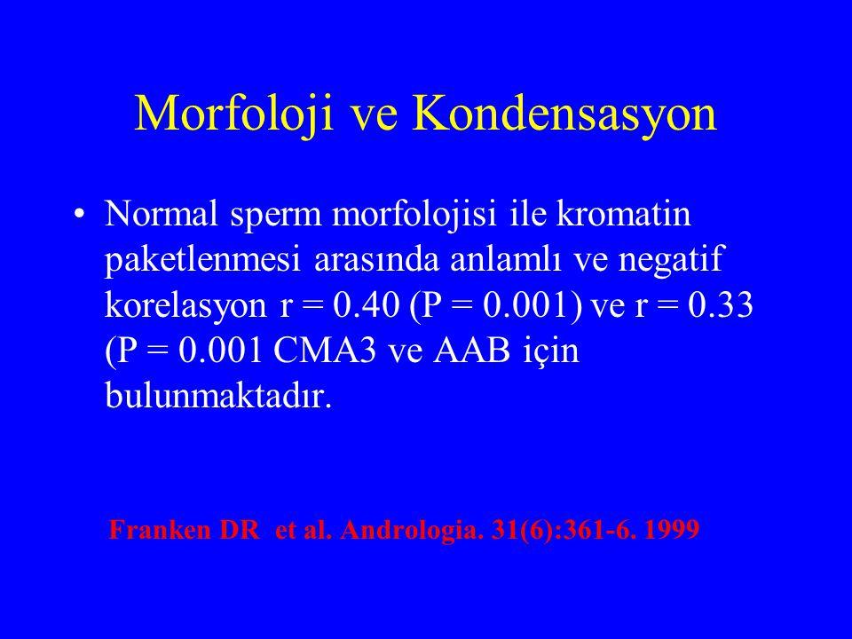 Morfoloji ve Kondensasyon