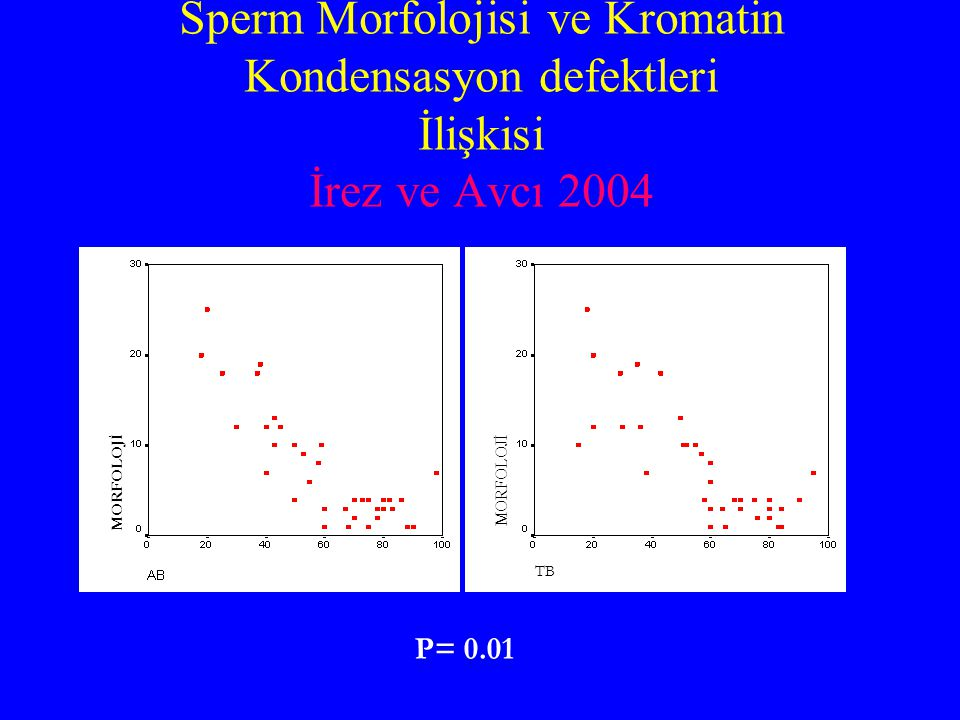 Sperm Morfolojisi ve Kromatin Kondensasyon defektleri İlişkisi İrez ve Avcı 2004