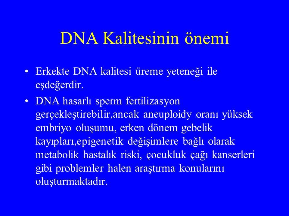 DNA Kalitesinin önemi Erkekte DNA kalitesi üreme yeteneği ile eşdeğerdir.