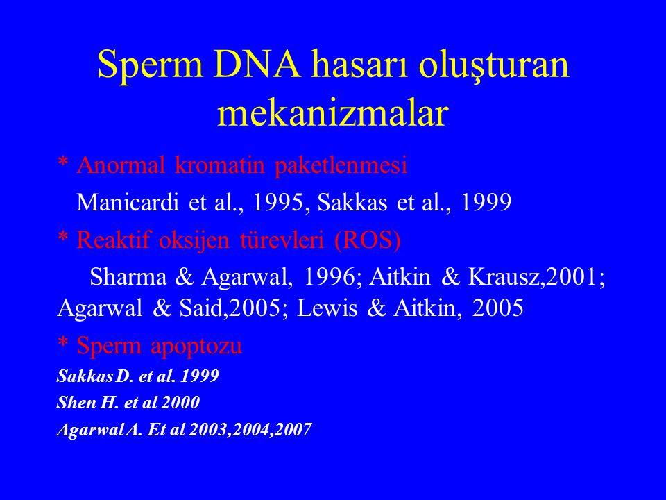 Sperm DNA hasarı oluşturan mekanizmalar