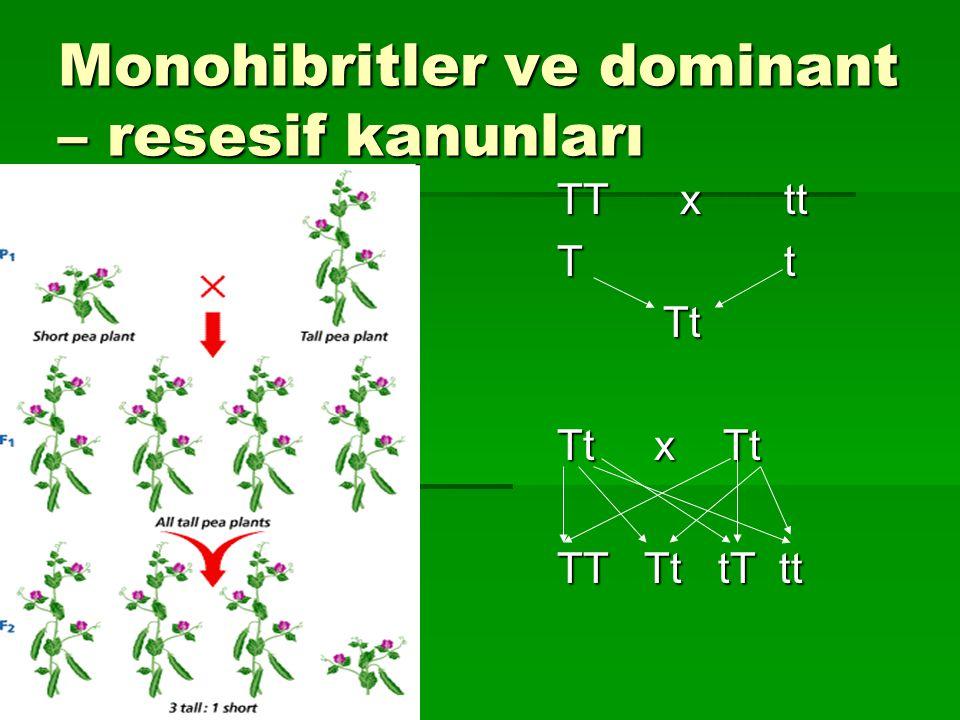 Monohibritler ve dominant – resesif kanunları