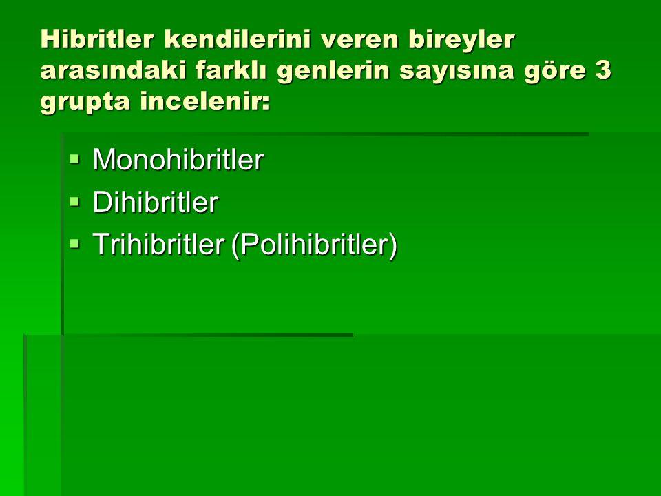 Trihibritler (Polihibritler)
