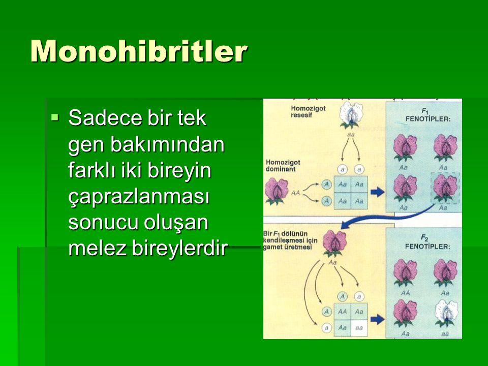 Monohibritler Sadece bir tek gen bakımından farklı iki bireyin çaprazlanması sonucu oluşan melez bireylerdir.