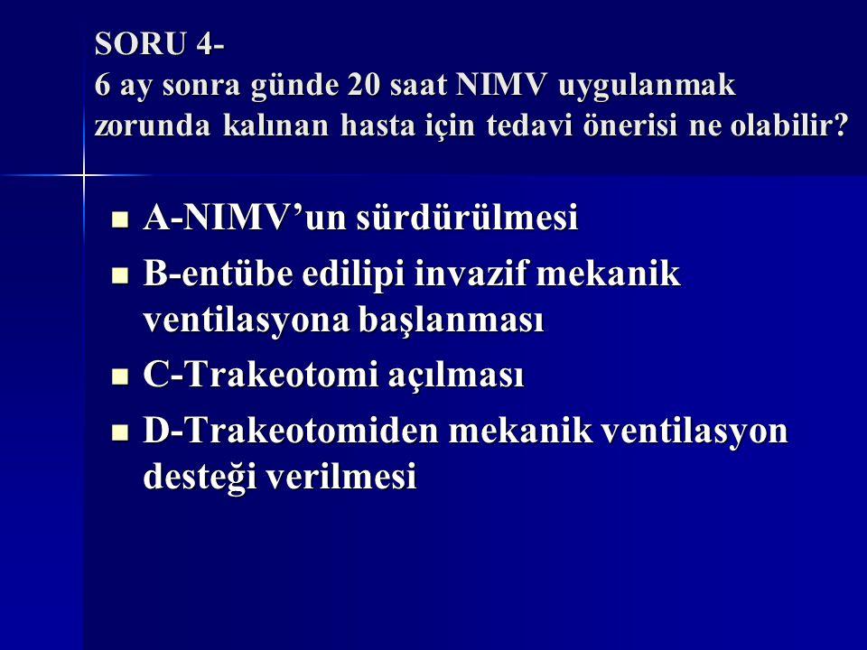 A-NIMV'un sürdürülmesi