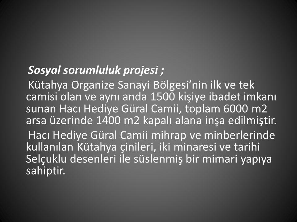Sosyal sorumluluk projesi ;