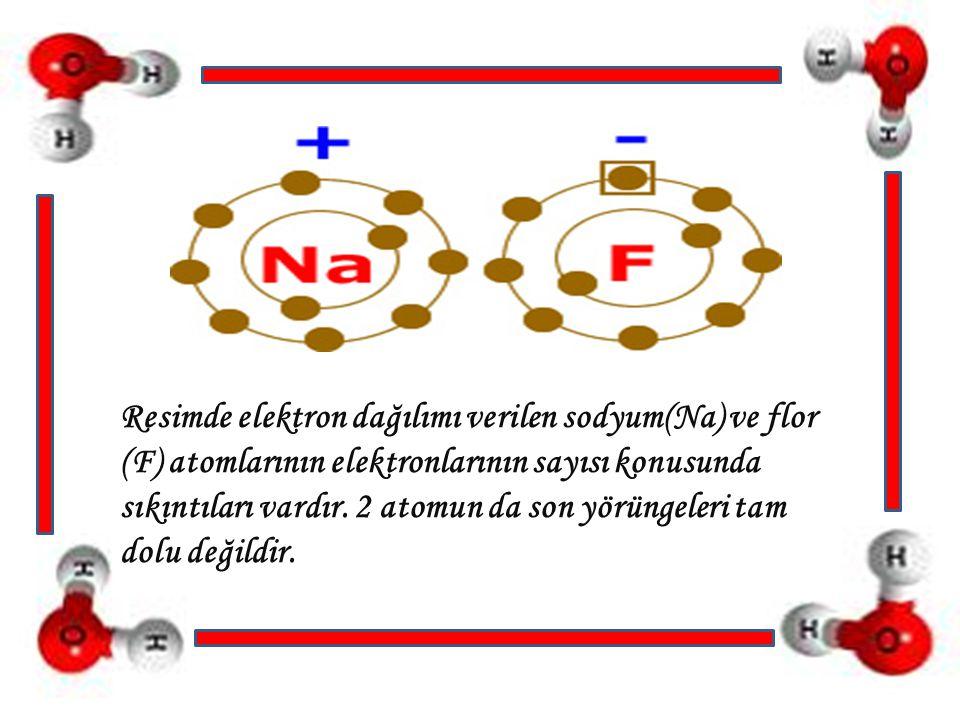 Resimde elektron dağılımı verilen sodyum(Na) ve flor (F) atomlarının elektronlarının sayısı konusunda sıkıntıları vardır.