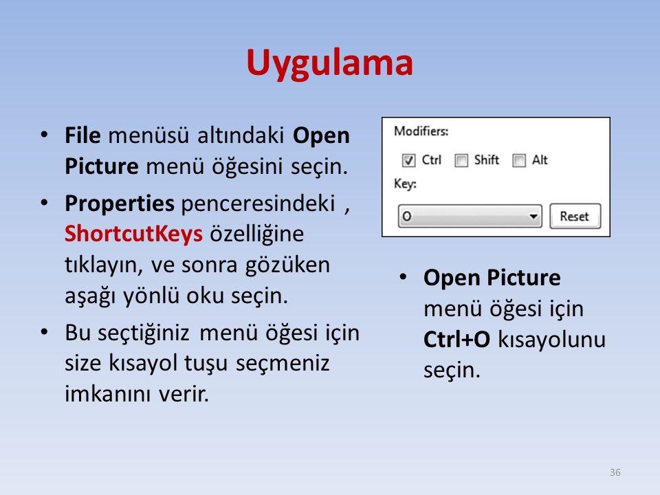 Uygulama File menüsü altındaki Open Picture menü öğesini seçin.