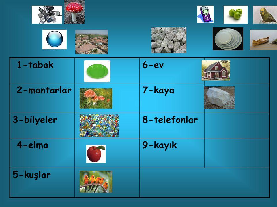 1-tabak 6-ev 2-mantarlar 7-kaya 3-bilyeler 8-telefonlar 4-elma 9-kayık 5-kuşlar