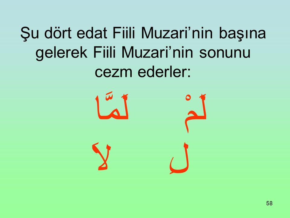 Şu dört edat Fiili Muzari'nin başına gelerek Fiili Muzari'nin sonunu cezm ederler: