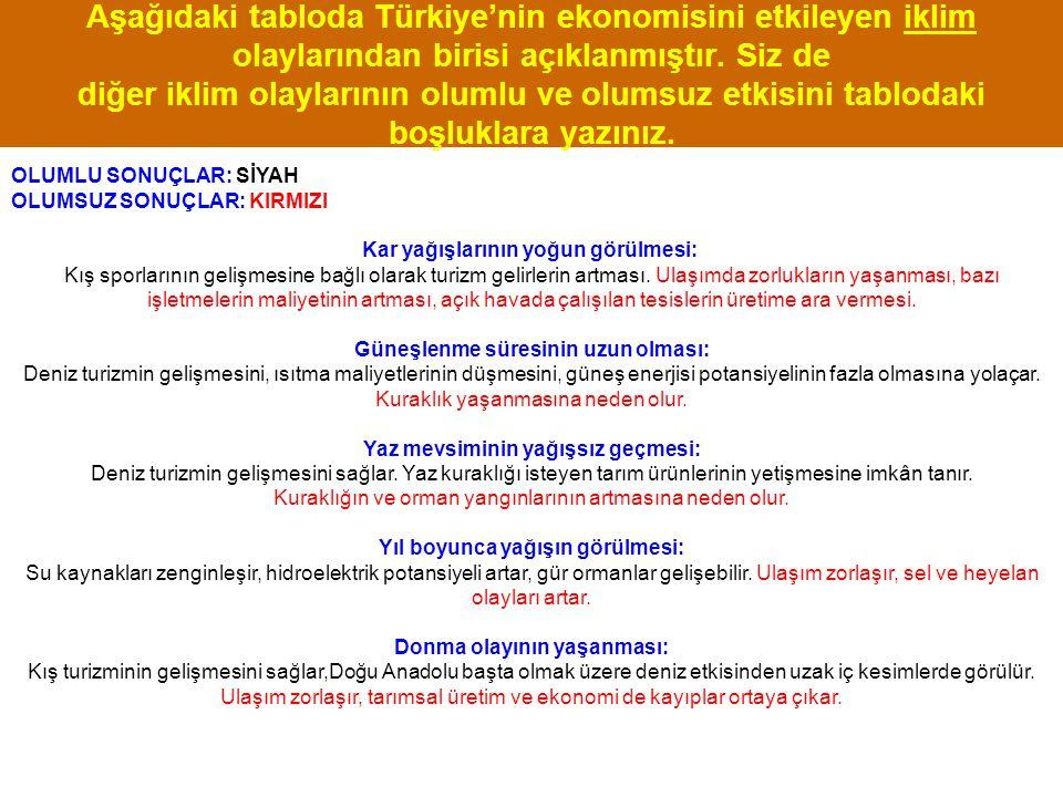 Aşağıdaki tabloda Türkiye'nin ekonomisini etkileyen iklim olaylarından birisi açıklanmıştır. Siz de diğer iklim olaylarının olumlu ve olumsuz etkisini tablodaki boşluklara yazınız.