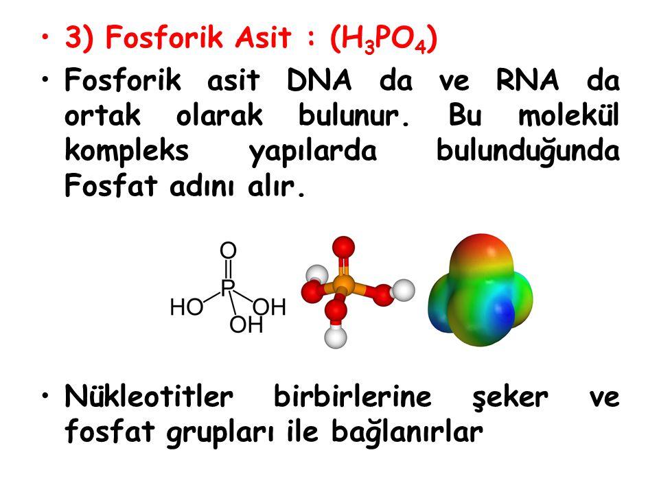 3) Fosforik Asit : (H3PO4) Fosforik asit DNA da ve RNA da ortak olarak bulunur. Bu molekül kompleks yapılarda bulunduğunda Fosfat adını alır.