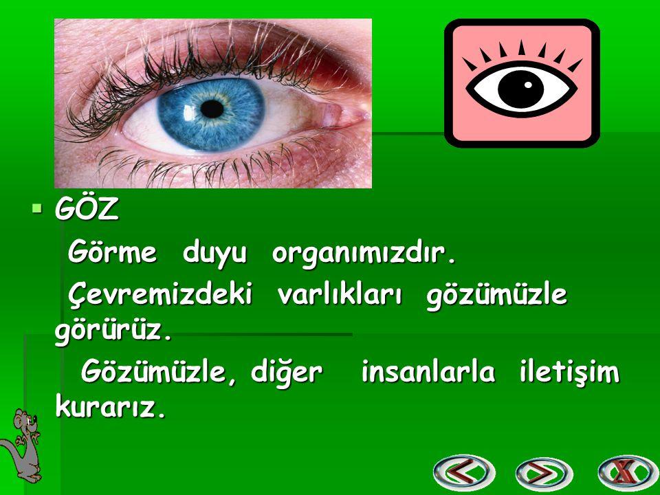 GÖZ Görme duyu organımızdır. Çevremizdeki varlıkları gözümüzle görürüz.