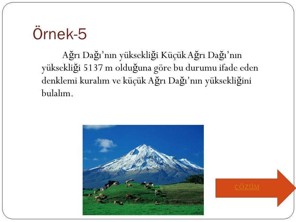 Örnek-5