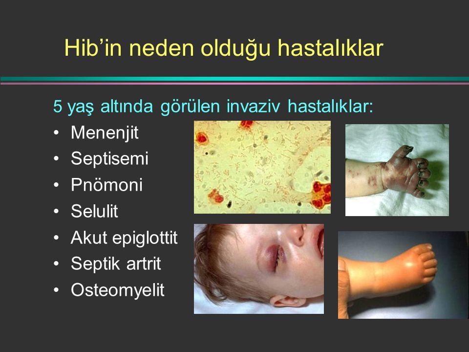 Hib'in neden olduğu hastalıklar