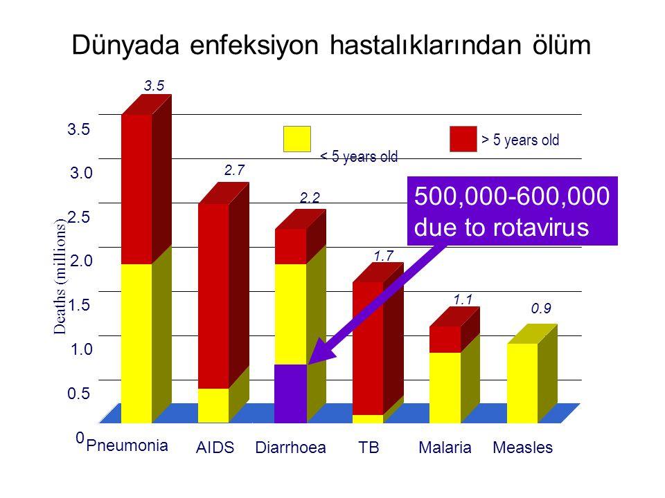 Dünyada enfeksiyon hastalıklarından ölüm