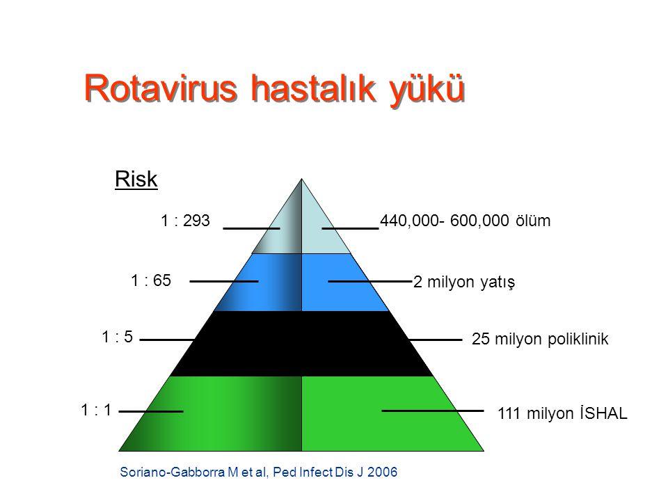 Rotavirus hastalık yükü