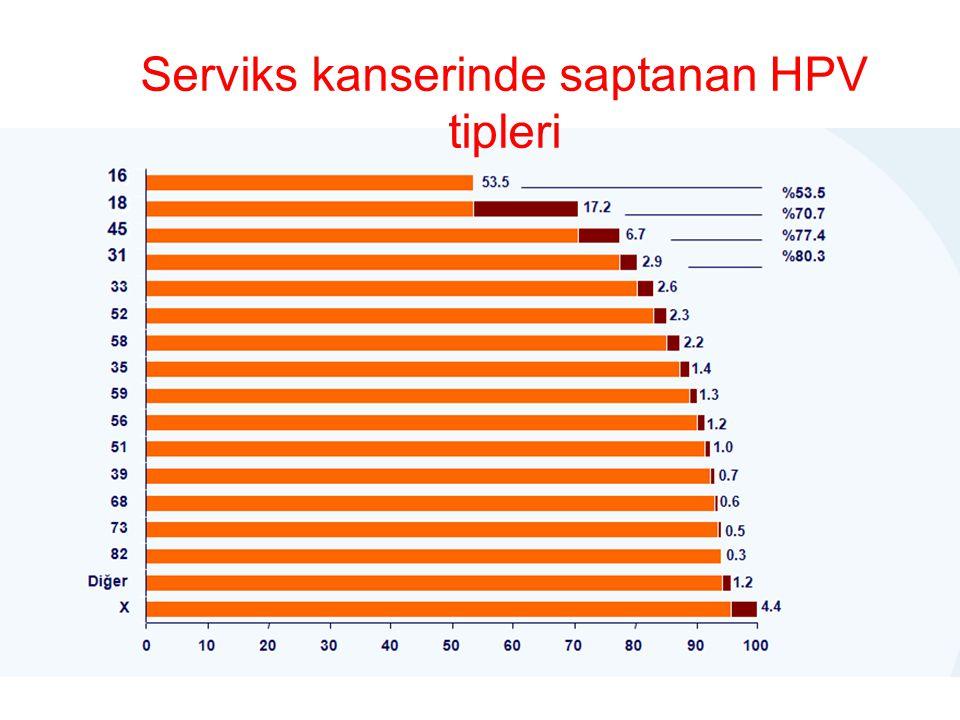 Serviks kanserinde saptanan HPV tipleri