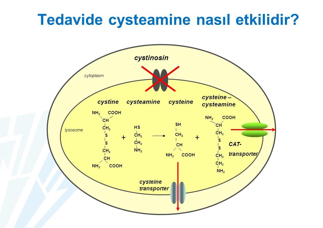 Tedavide cysteamine nasıl etkilidir