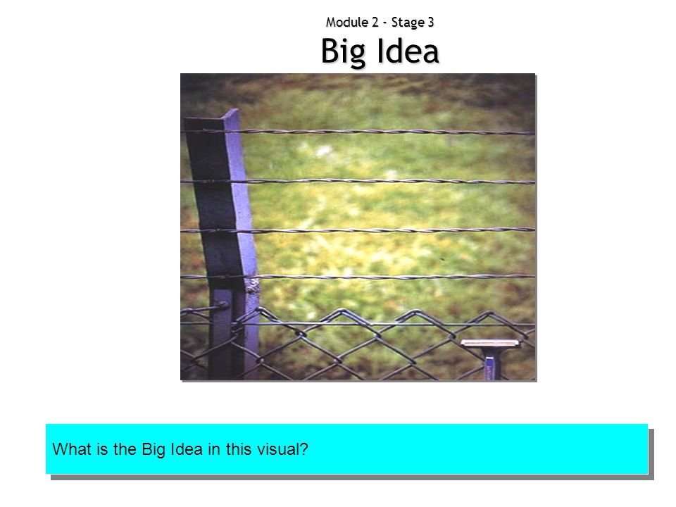 What is the Big Idea in this visual