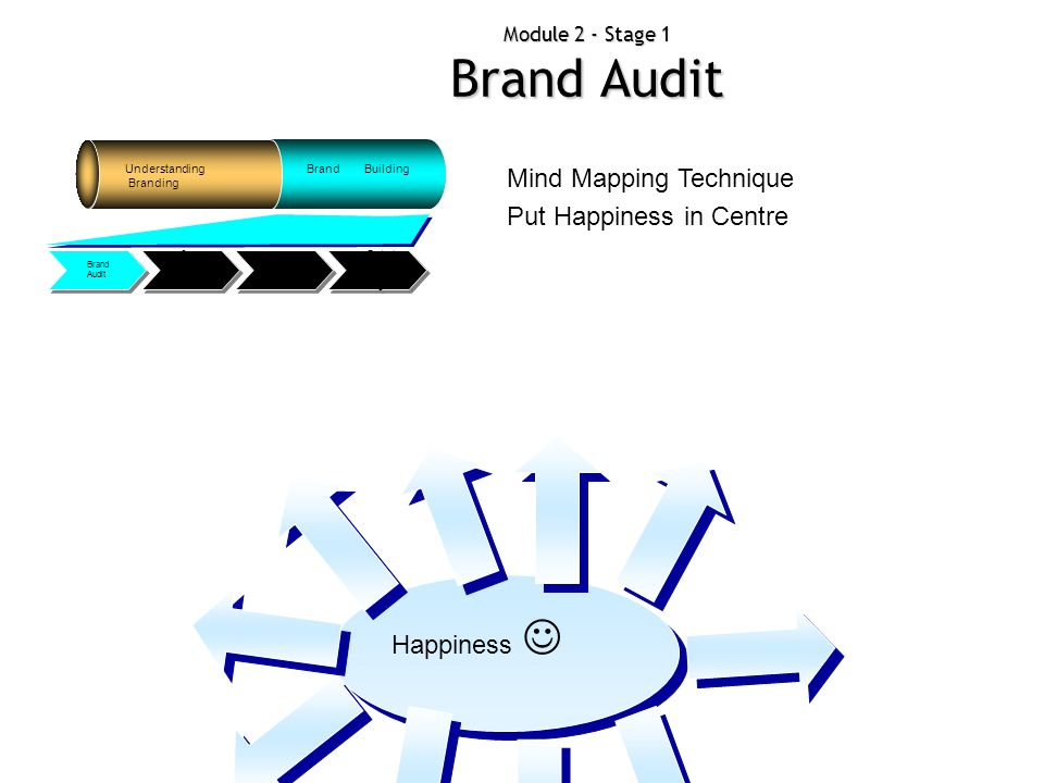 Module 2 - Stage 1 Brand Audit