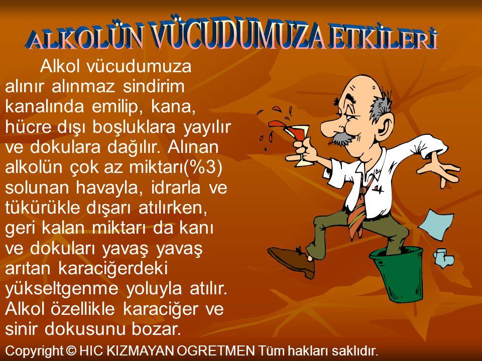 ALKOLÜN VÜCUDUMUZA ETKİLERİ