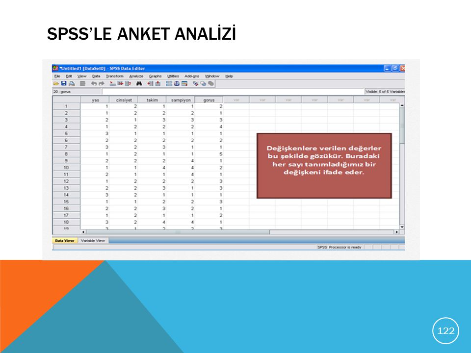 SPSS'LE ANKET ANALİZİ
