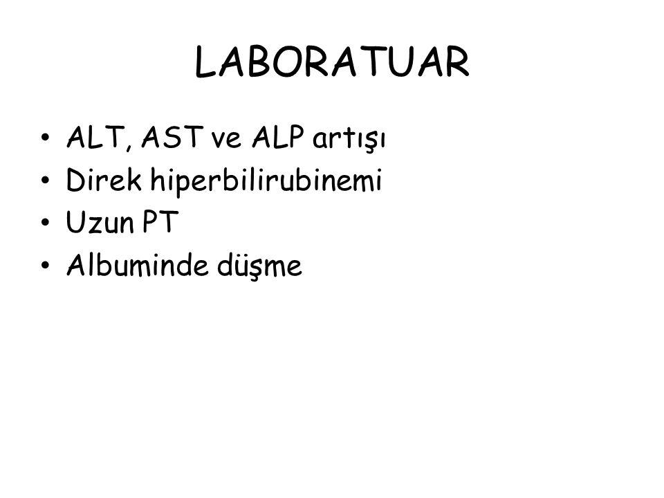 LABORATUAR ALT, AST ve ALP artışı Direk hiperbilirubinemi Uzun PT