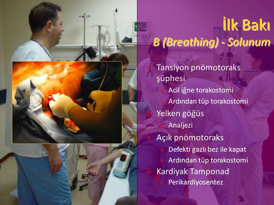 İlk Bakı B (Breathing) - Solunum