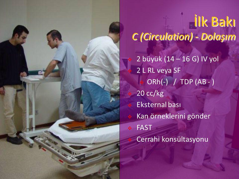 İlk Bakı C (Circulation) - Dolaşım