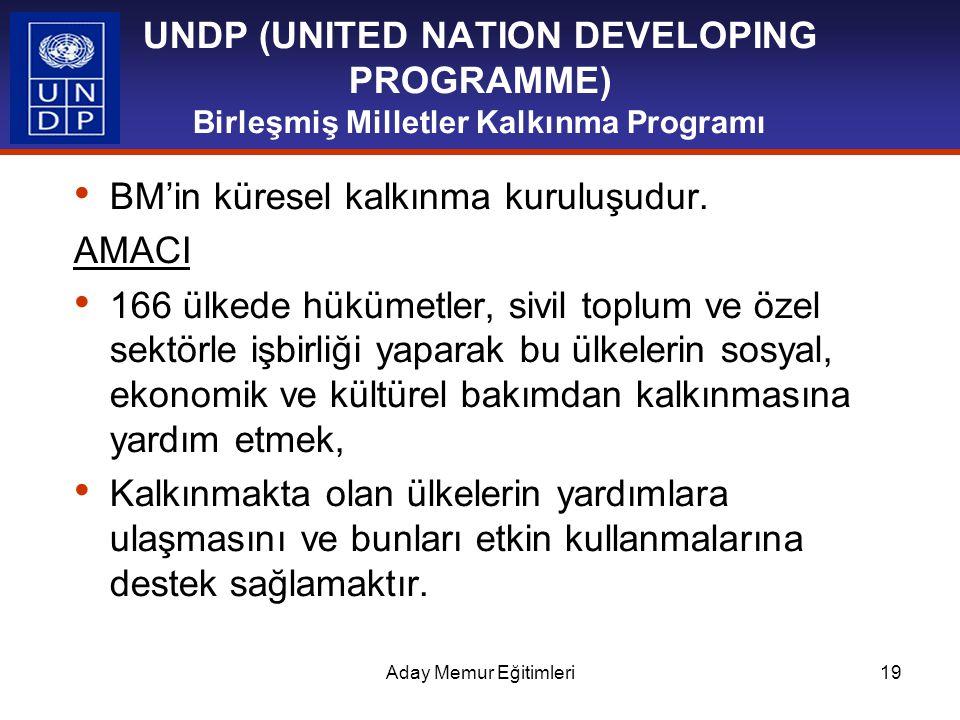 BM'in küresel kalkınma kuruluşudur. AMACI
