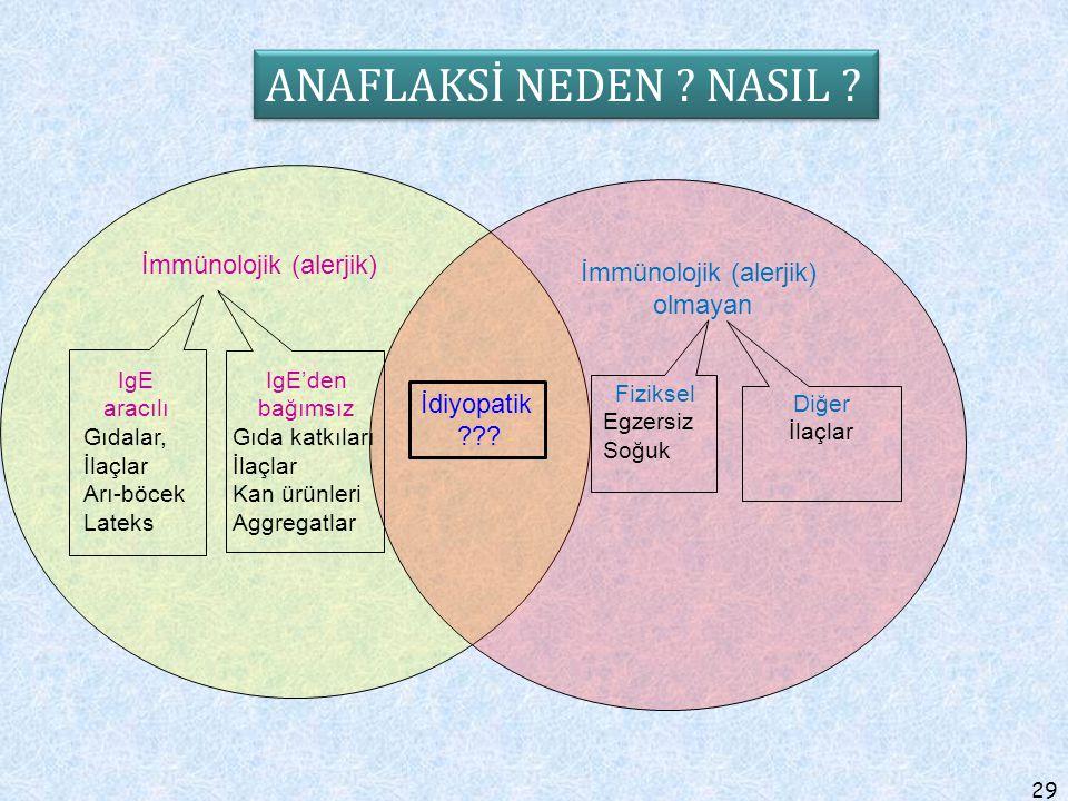 İmmünolojik (alerjik)