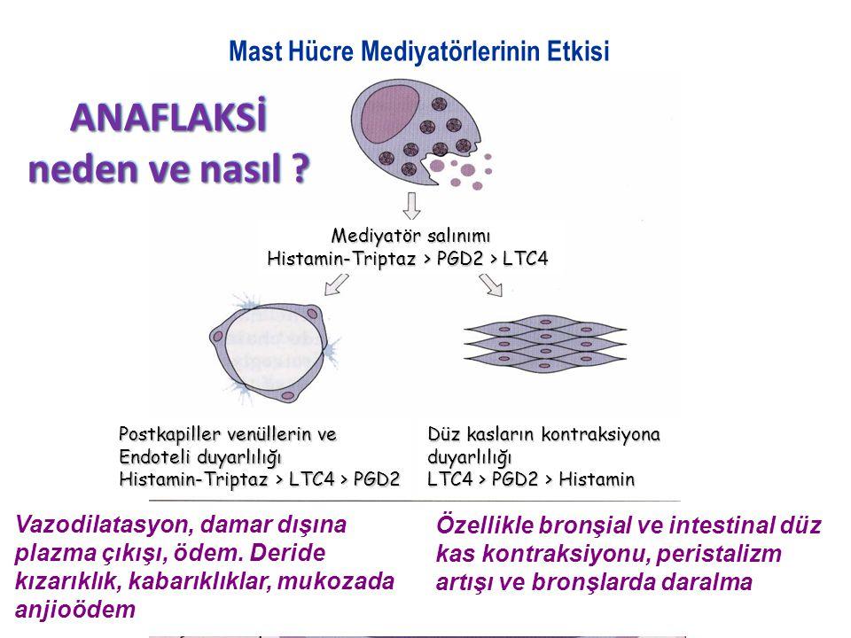Mast Hücre Mediyatörlerinin Etkisi ANAFLAKSİ neden ve nasıl