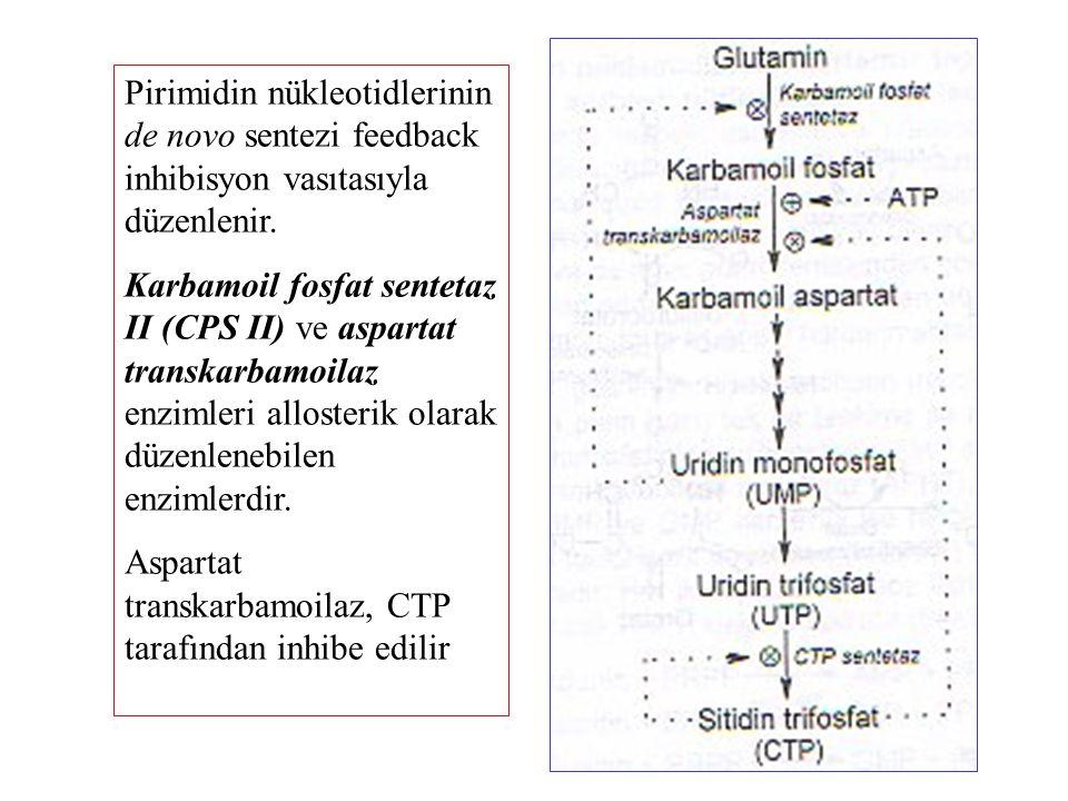 Pirimidin nükleotidlerinin de novo sentezi feedback inhibisyon vasıtasıyla düzenlenir.