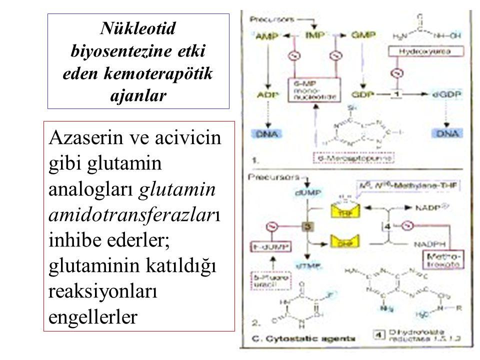 Nükleotid biyosentezine etki eden kemoterapötik ajanlar