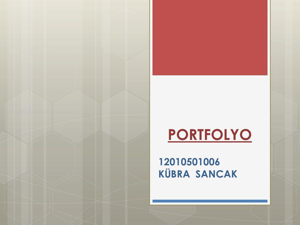 PORTFOLYO 12010501006 KÜBRA SANCAK