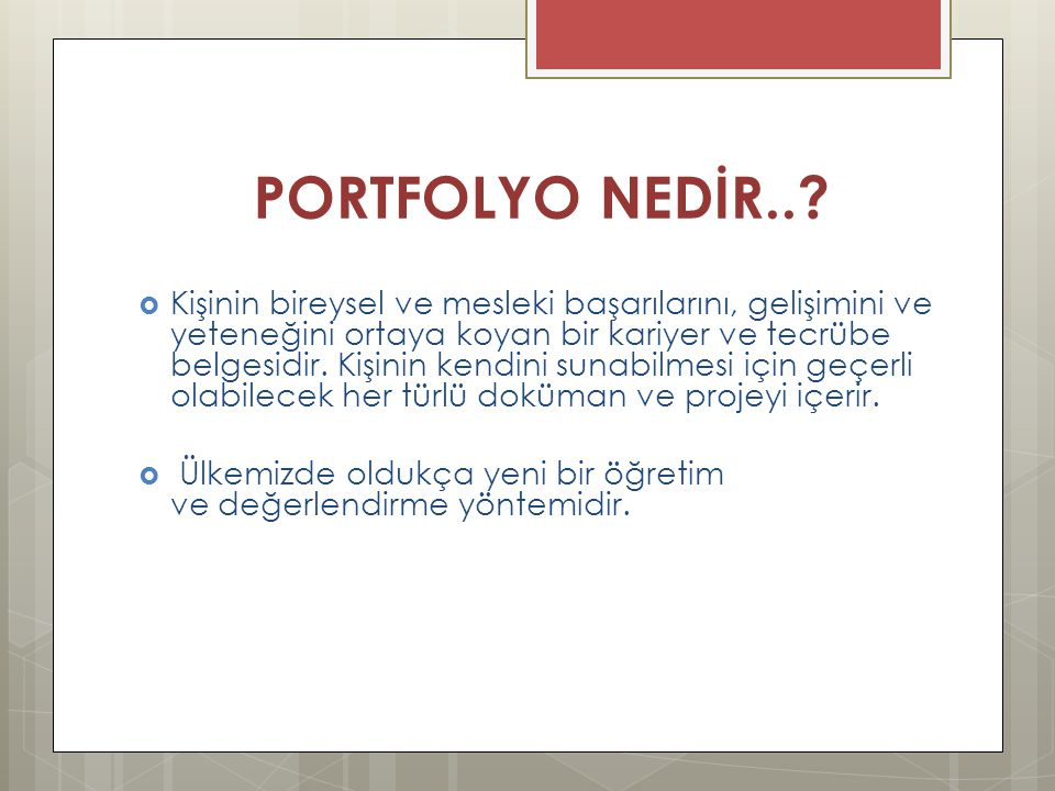 PORTFOLYO NEDİR..