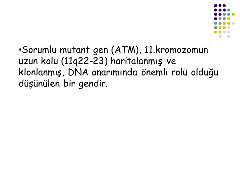 Sorumlu mutant gen (ATM), 11