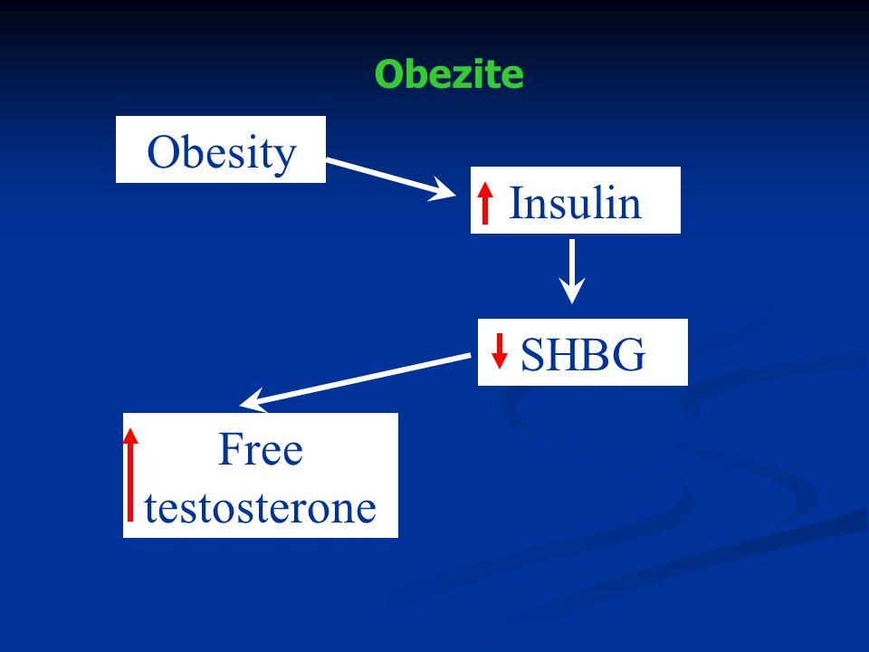 Obezite Obesity Insulin SHBG Free testosterone
