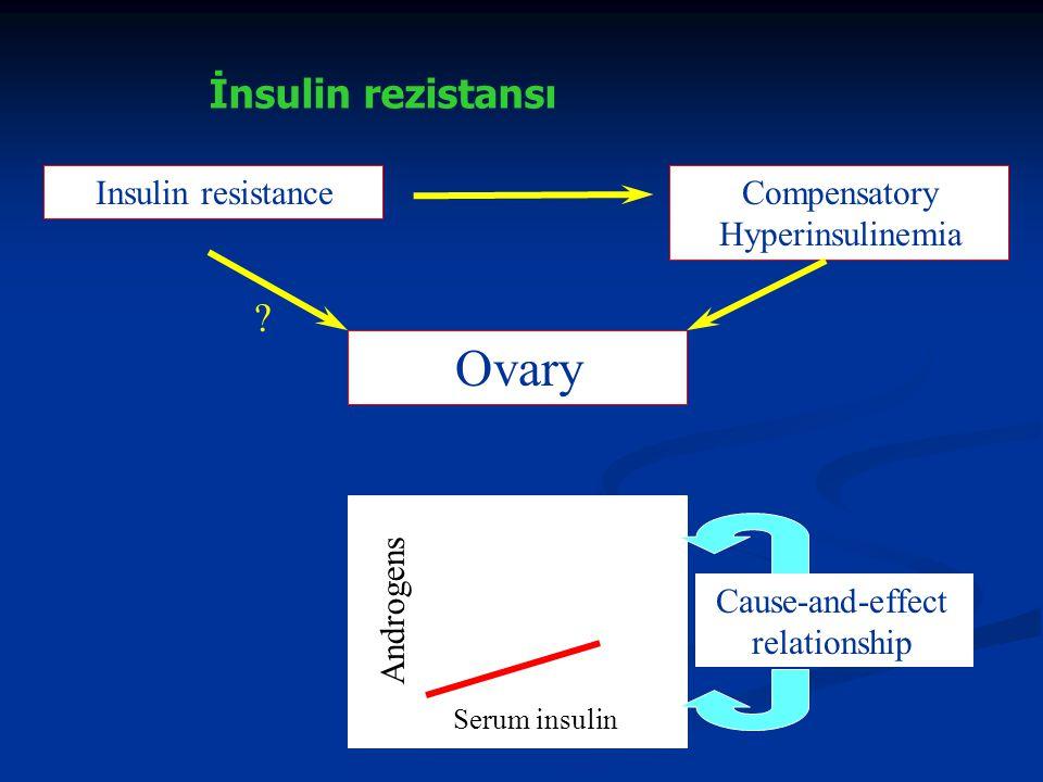 Ovary İnsulin rezistansı Insulin resistance