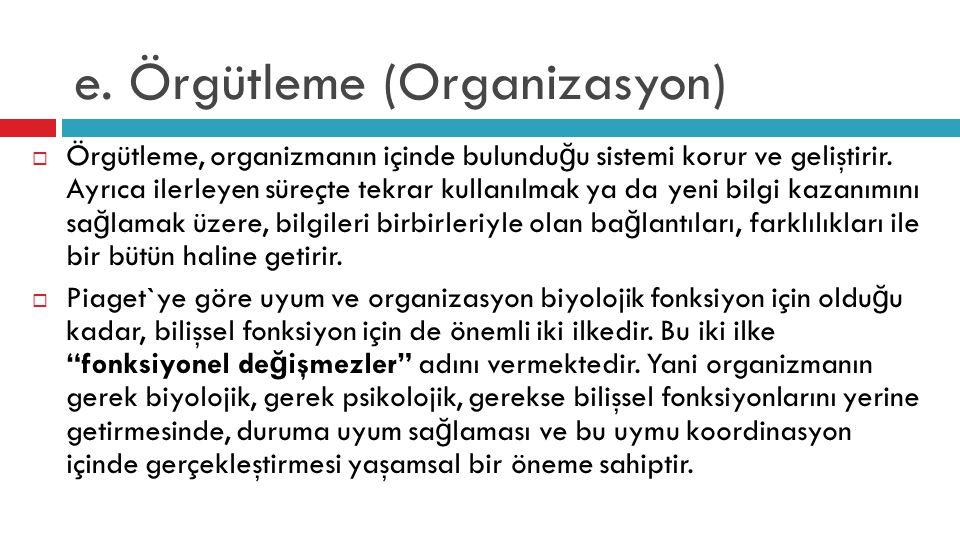 e. Örgütleme (Organizasyon)