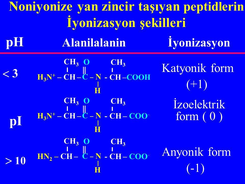 Noniyonize yan zincir taşıyan peptidlerin İyonizasyon şekilleri