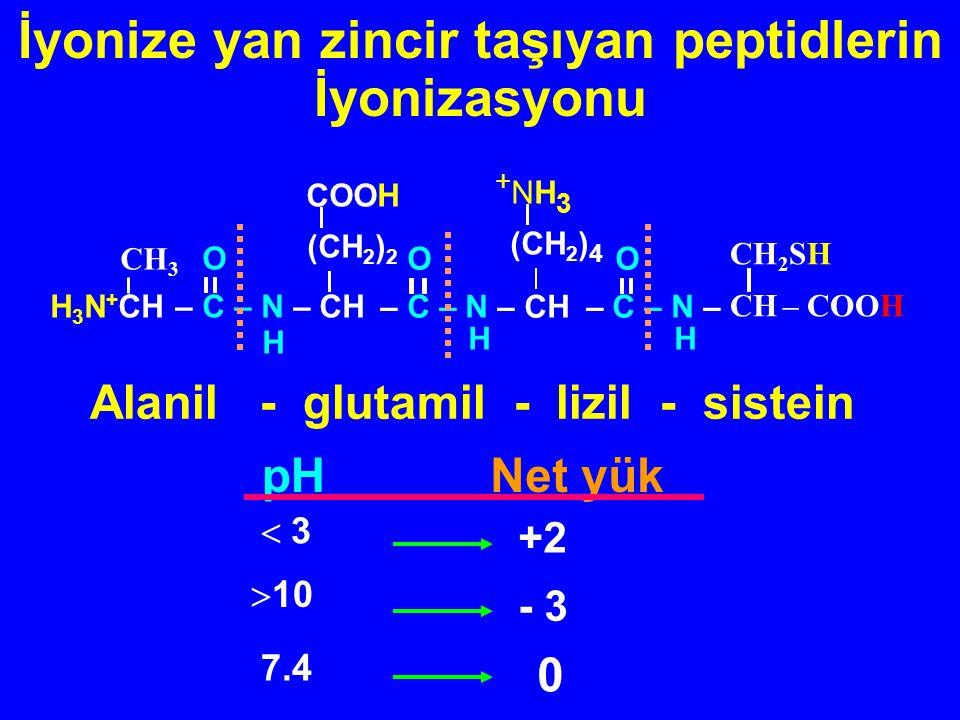 İyonize yan zincir taşıyan peptidlerin İyonizasyonu