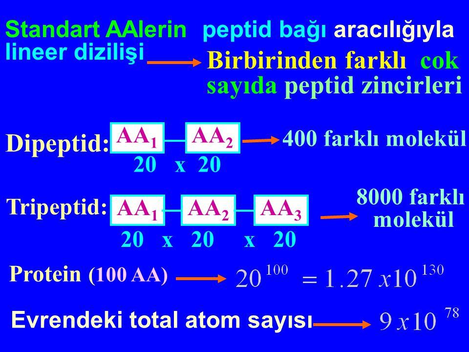 Evrendeki total atom sayısı