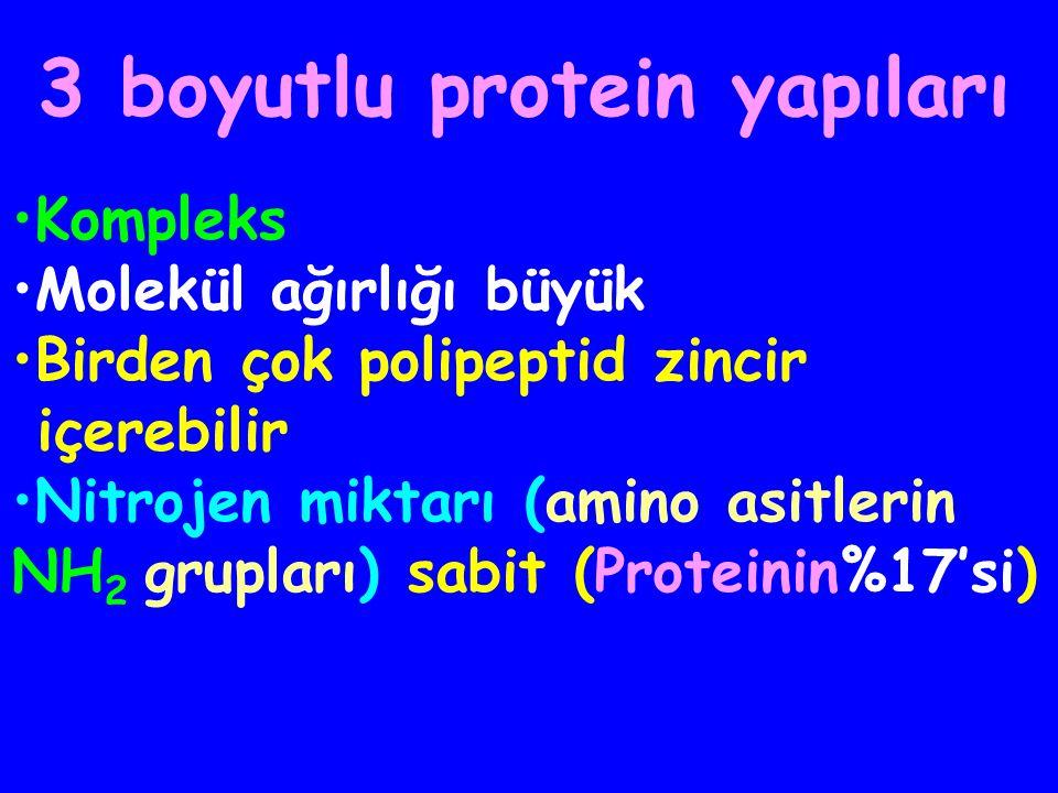 3 boyutlu protein yapıları