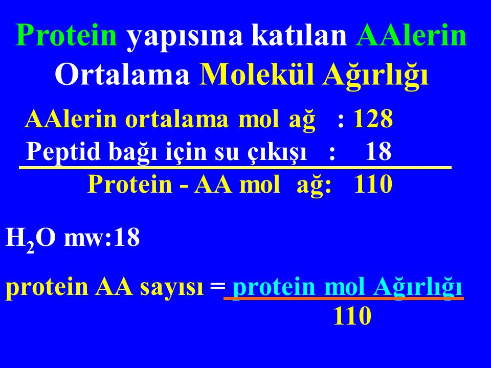Protein yapısına katılan AAlerin Ortalama Molekül Ağırlığı