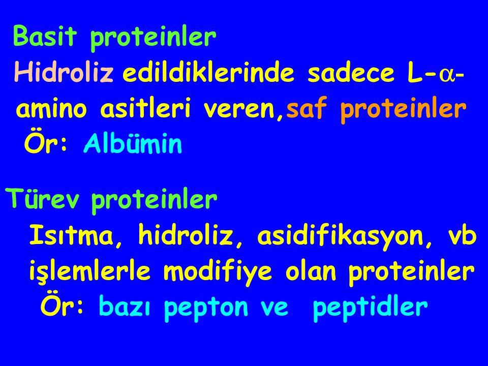 Basit proteinler Hidroliz edildiklerinde sadece L-- amino asitleri veren,saf proteinler. Ör: Albümin.