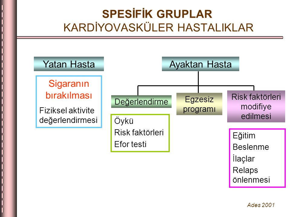 SPESİFİK GRUPLAR KARDİYOVASKÜLER HASTALIKLAR