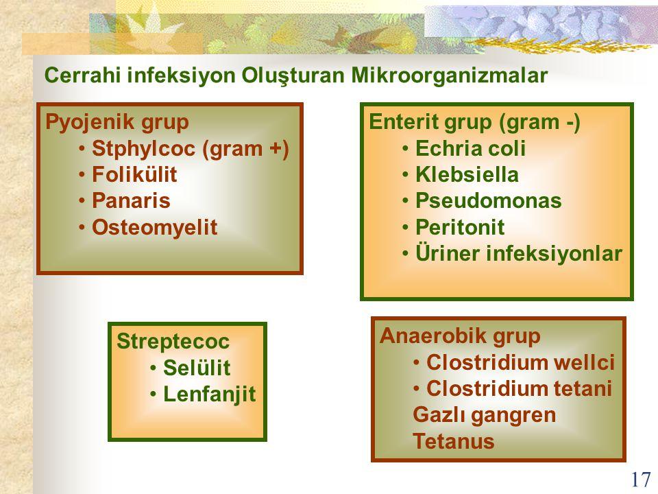 Cerrahi infeksiyon Oluşturan Mikroorganizmalar