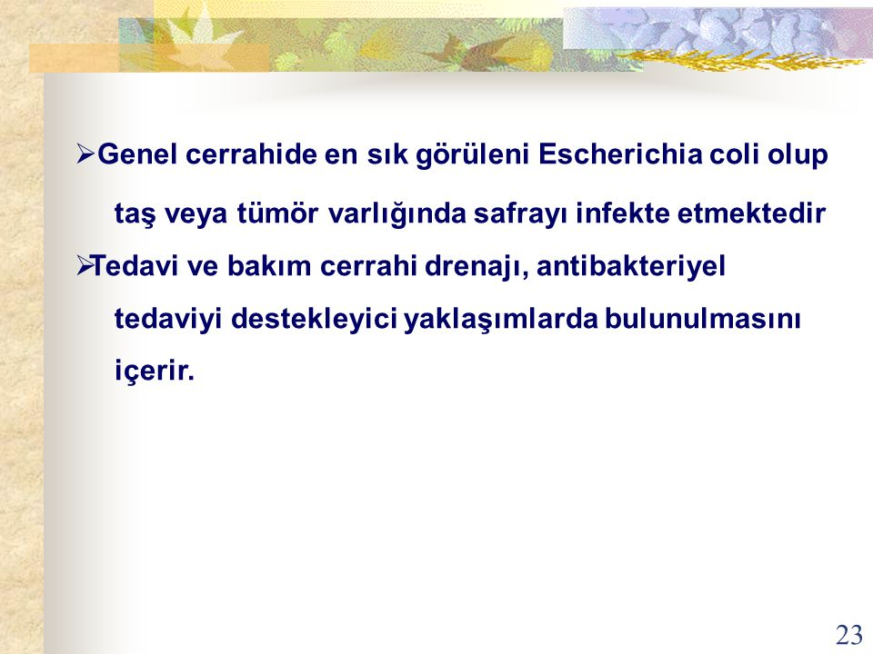 Genel cerrahide en sık görüleni Escherichia coli olup